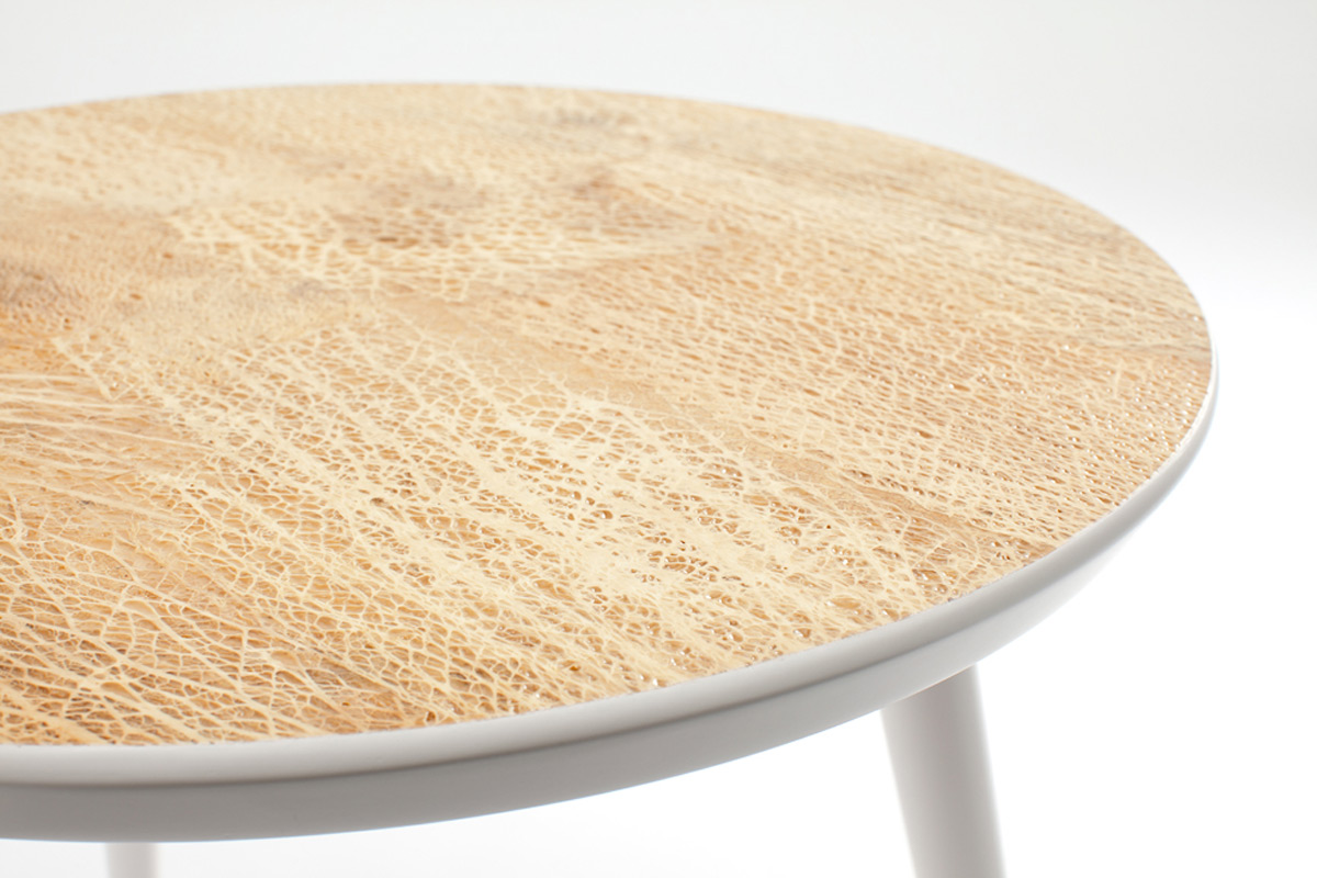 prickly-pear-cactus-fiber-furnitures
